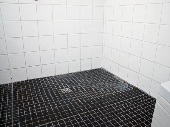 Hohe Temperaturen sowie Nässe und Luftfeuchtigkeit begünstigen das Wachstum von verschiedenen Mikroorganismen wie Bakterien oder Schimmel im Bad. Foto: Informationsbüro Bodengleiche Duschen