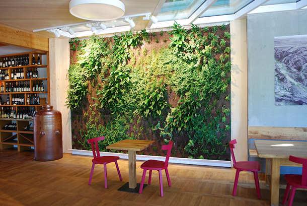 »Grüne Kunstwerke«: Systemlösung »Fassadengarten« für innen und außen