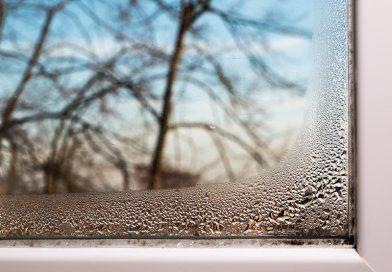 Feuchte an den Fenstern und schlechter Luftaustausch fördern die Schimmelbildung. Die DIN 1946-6, ordentlich in die Praxis umgesetzt, beugt dem vor. Foto: Regel-air